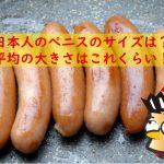 日本人のペニス平均サイズ